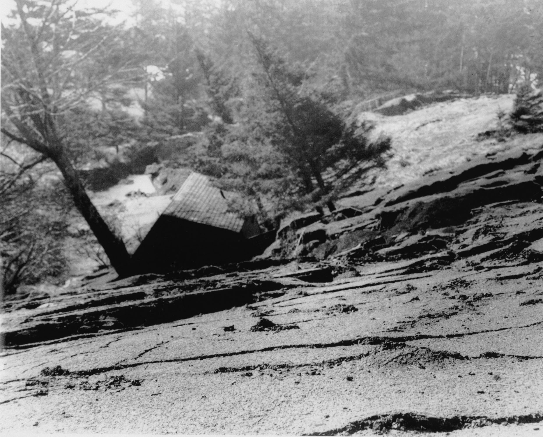 As you can see from the images, the damage at Ecola State Park was significant and is perhaps the reason that there are no longer buildings at the top of the park.