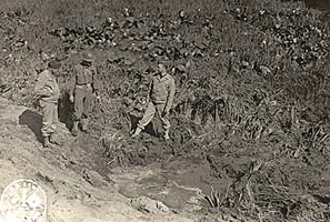 Soldiers at Fort Stevens inspecting a shell crater in a patch of skunk cabbage just outside of the Fort.
